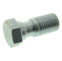 Hollow bolt (brake hose)