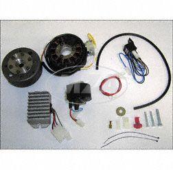 Lichtmagnetzündanlage 6V 100W mit integrierter vollelektronischer Zündung für ES175-300/0/1/2 und ETS250