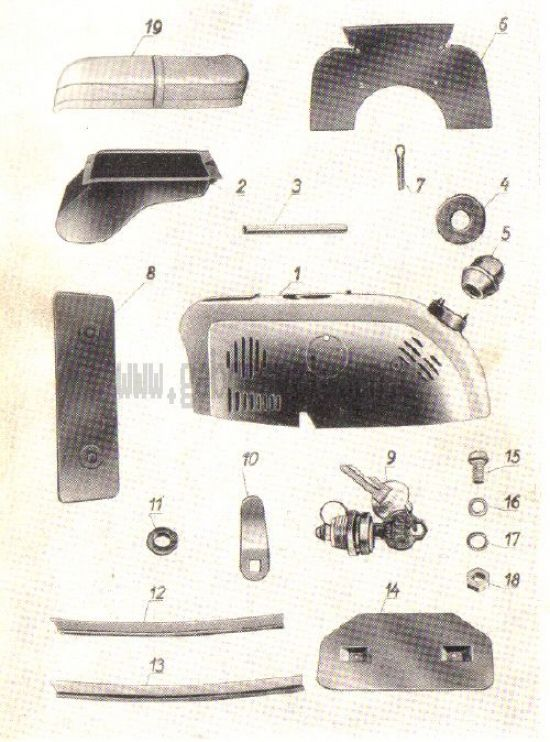 12. Hinterhaube