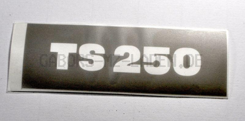Lackierschablone für Werkzeugfachdeckel (Sitzbank) TS 250